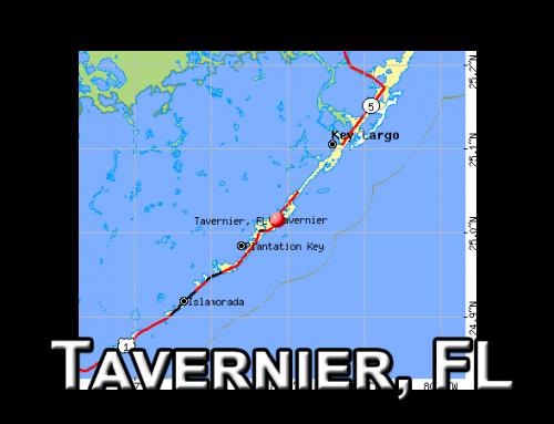 AG – Tavernier | Vignetos – Plantation